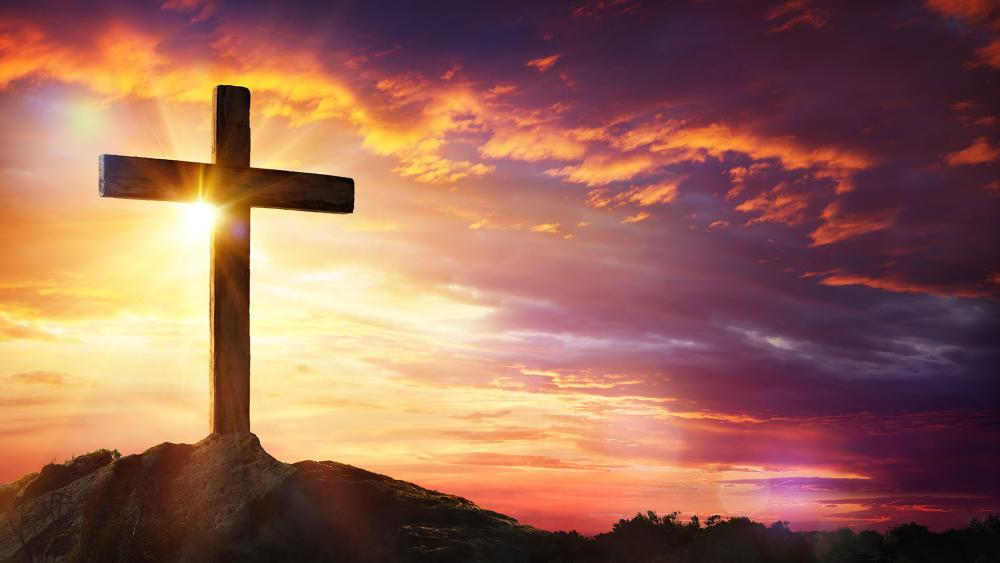 Top 5 Amazing Facts on Christianity!